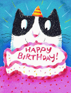 20090128190923-emmy-cat-birthday.jpg